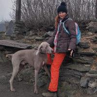 Recenze hlídání a venčení psa